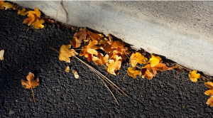 https://pixabay.com/en/leaves-blacktop-curb-asphalt-road-543492/